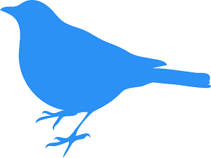 bluebird-303230_640
